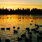 Lost Lagoon - Frozen by jadennyberg