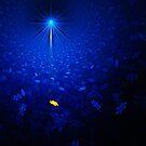 Apophysis Star - Reworked by Ann Garrett