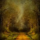 Unknown Footpath by Svetlana Sewell
