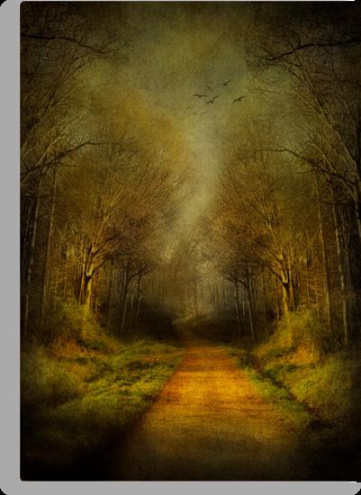 Unknown Footpath by Svetlana Sewell