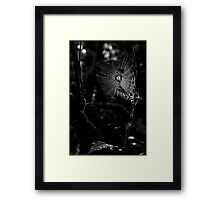 Web of Falls Framed Print