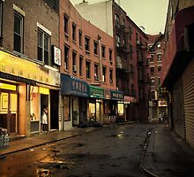 Seduction of the City - Chinatown - New York City by Vivienne Gucwa