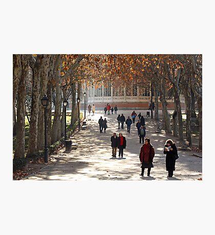 Madrid Park stroll Photographic Print