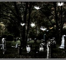 Milkweed Seeds Flying before Graves by Wayne King