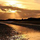 Donabate Beach by Martina Fagan