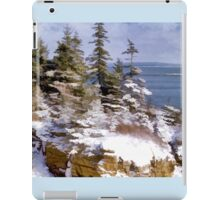 Snow in Acadia National Park Maine iPad Case/Skin