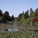 The Lake at Sheffield Park Gardens. by Brunoboy
