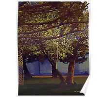 Spring Green in May Moonlight Poster