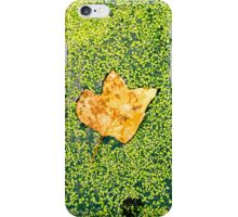 Lonely leaf iPhone Case/Skin