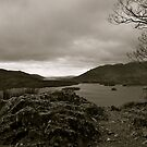This Is Surprise View - The Lake District National Park by Lou Wilson