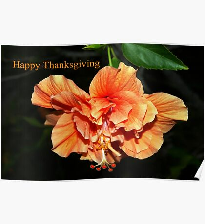 Orange hibiscus thanksgiving Poster