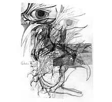 Mechanics of a Bird. Photographic Print