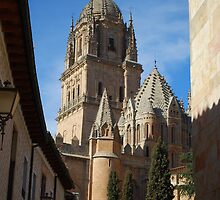 Salamanca Cathedral by luissantos84
