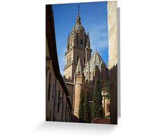 Salamanca Cathedral Greeting Card