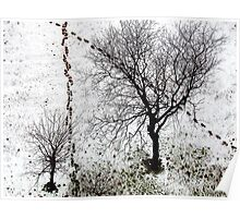 Shoe prints in the snow, New York City Poster