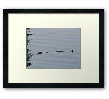 Not Loch Ness  Framed Print