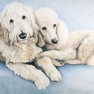 Labradoodle and Standard Poodle by Charlotte Yealey