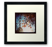 Autumn Ttv Framed Print
