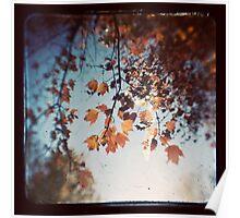 Autumn Ttv Poster