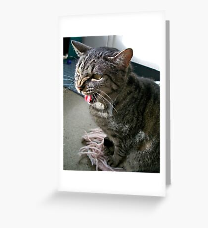 Back off! Greeting Card