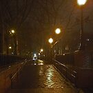 Sara D. Roosevelt Park, Lower East Side-Manhattan by michael6076