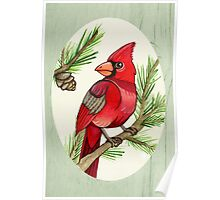 Male Cardinal and Branches Poster