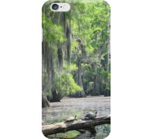 swamp for iPhone iPhone Case/Skin