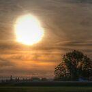 Where Sunsets Begin by Mari  Wirta