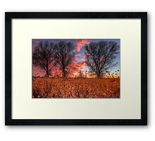 Not Four Trees Framed Print