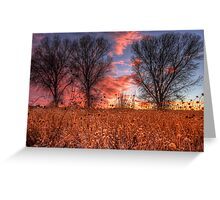 Not Four Trees Greeting Card