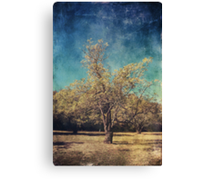 All That's Unknown Canvas Print