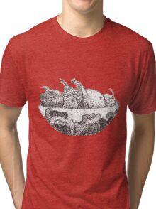 Fruit Bowl Tri-blend T-Shirt
