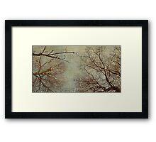 Un hiver Framed Print