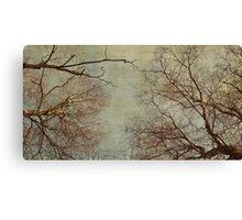 Un hiver Canvas Print