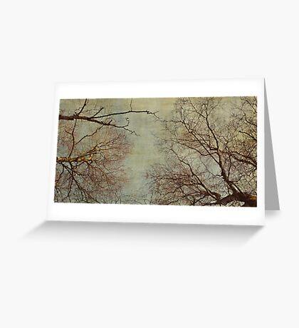 Un hiver Greeting Card