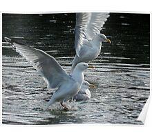 Formation Landing Poster