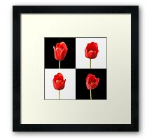 Red Tulips against a Black and White Check Background Wall Art Framed Print