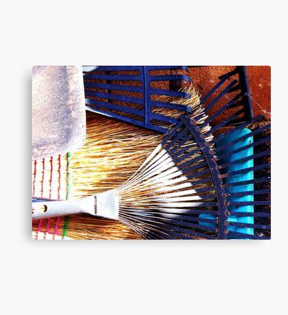 teeth, tines, bristles and blades Canvas Print