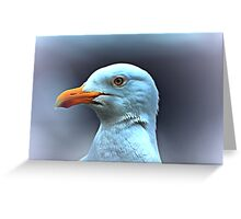 Portrait of a Herring Gull  Greeting Card
