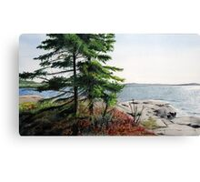 Boswell's Point #1 Canvas Print