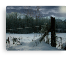 Weeping Winter Moon Canvas Print