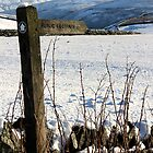 Footpath signpost against snow. by Mark Smitham