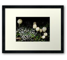 Miniature Eco System Framed Print