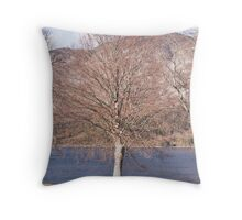 Bohinj, Slovenia. Throw Pillow