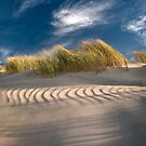 Ripples in the Sand by JOY KACHINA