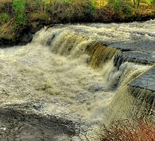 Middle Falls Aysgarth - HDR by Colin  Williams Photography