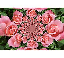 Roses 2 Photographic Print
