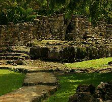 Mayan Ruins by Sandra Simmons