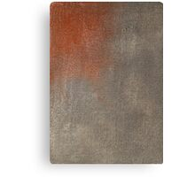 wall texture Canvas Print