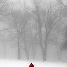 Hydrant by Mary Ann Reilly